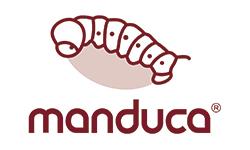 Manduca