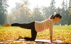 preparandote-para-el-embarazo